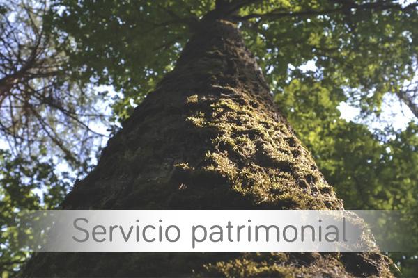Servicio Patrimonial
